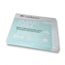 CRANBERRY SMART DAM GREEN NON LATEX 6